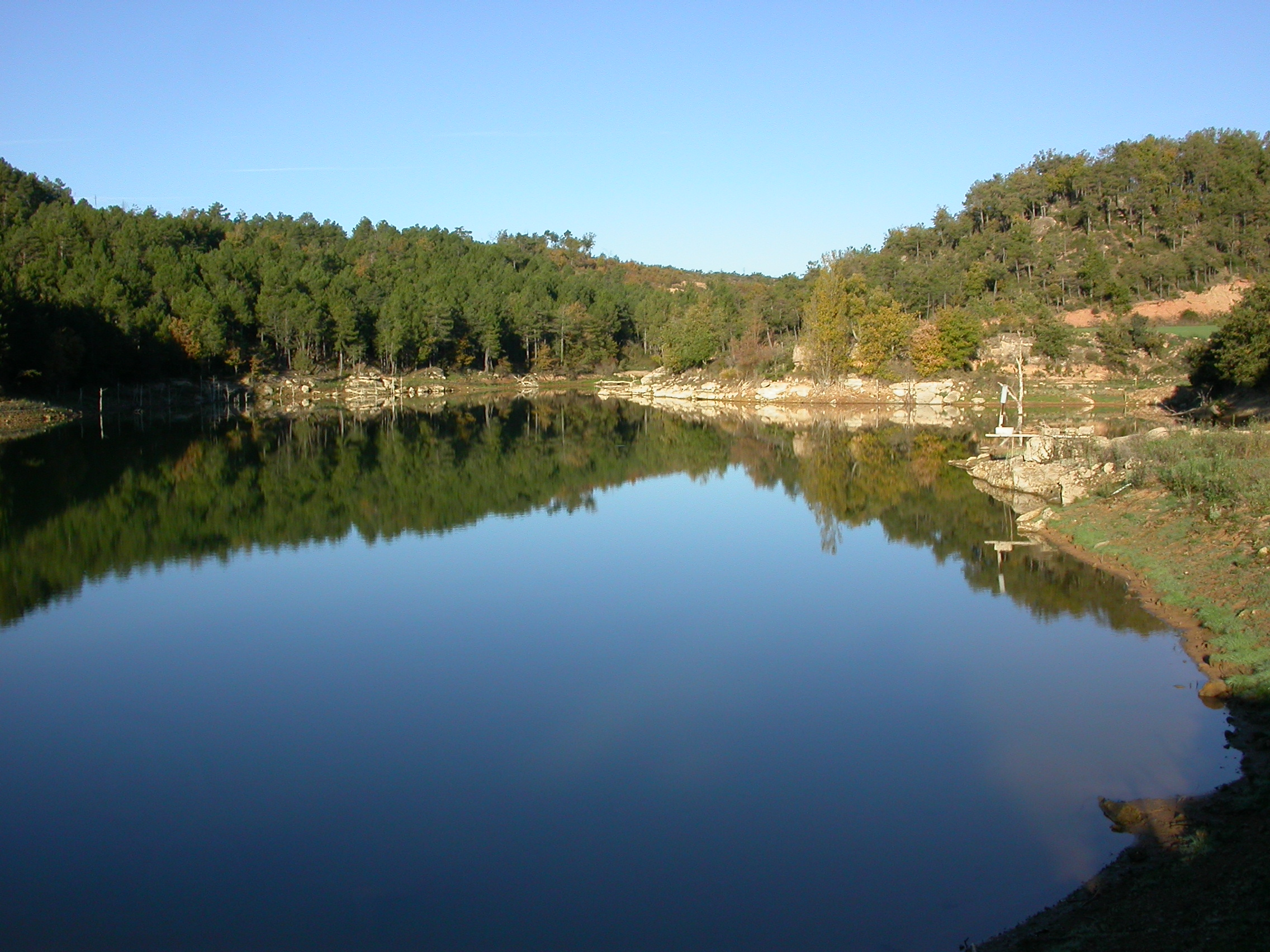 Resultats del cens d'ocells aquàtics hivernants al Solsonès i Lleida 2020